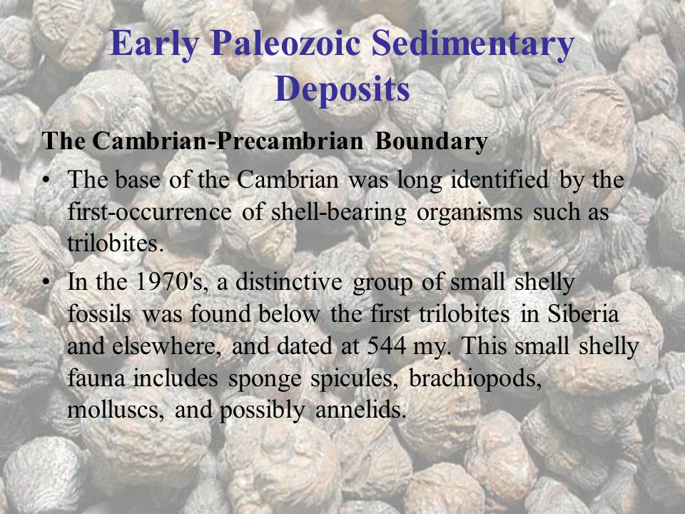 Early Paleozoic Sedimentary Deposits The Cambrian-Precambrian Boundary The base of the Cambrian was long identified by the first-occurrence of shell-bearing organisms such as trilobites.