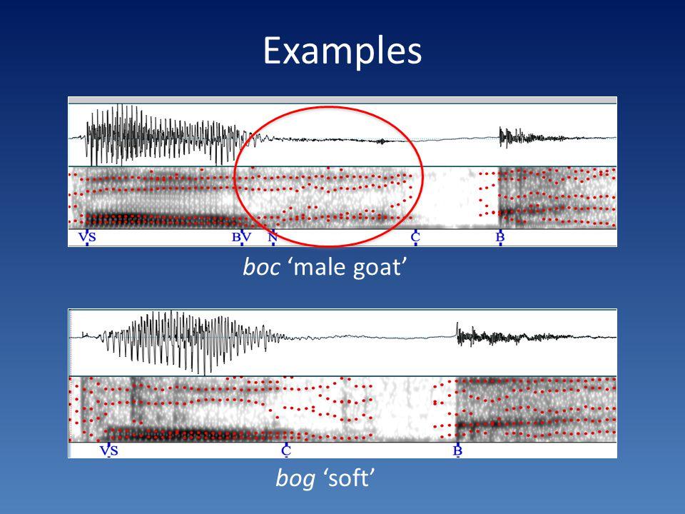Examples boc 'male goat' bog 'soft'