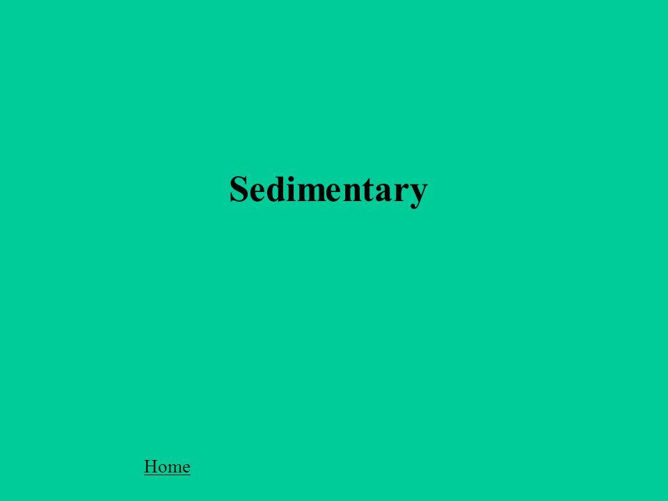 Sedimentary Home