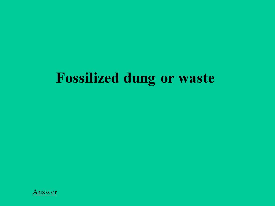 Fossilized dung or waste Answer