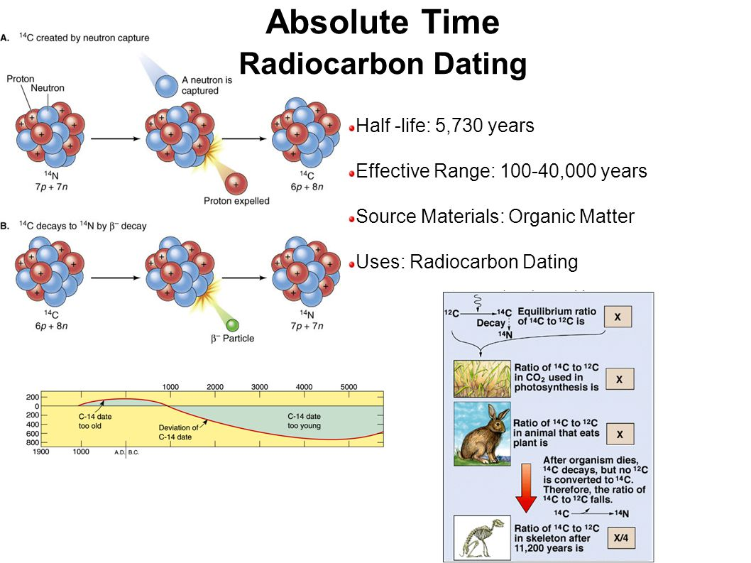Half -life: 5,730 years Effective Range: 100-40,000 years Source Materials: Organic Matter Uses: Radiocarbon Dating Absolute Time Radiocarbon Dating