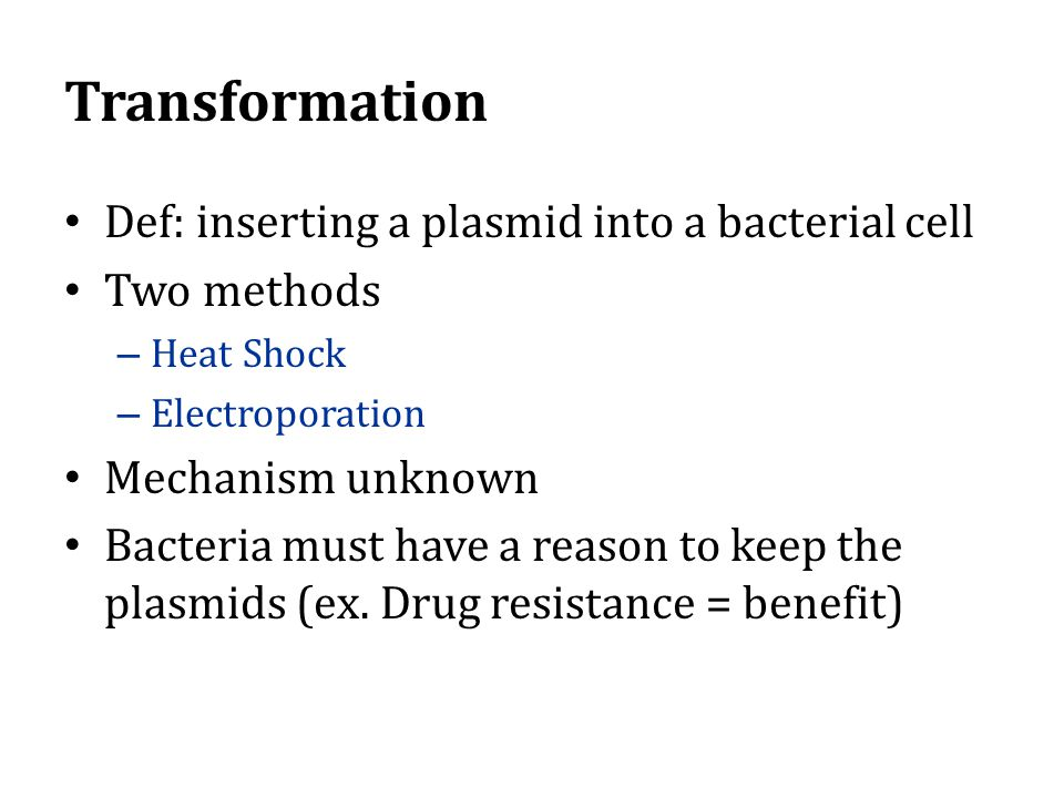 Transformation Def: inserting a plasmid into a bacterial cell Two methods – Heat Shock – Electroporation Mechanism unknown Bacteria must have a reason to keep the plasmids (ex.