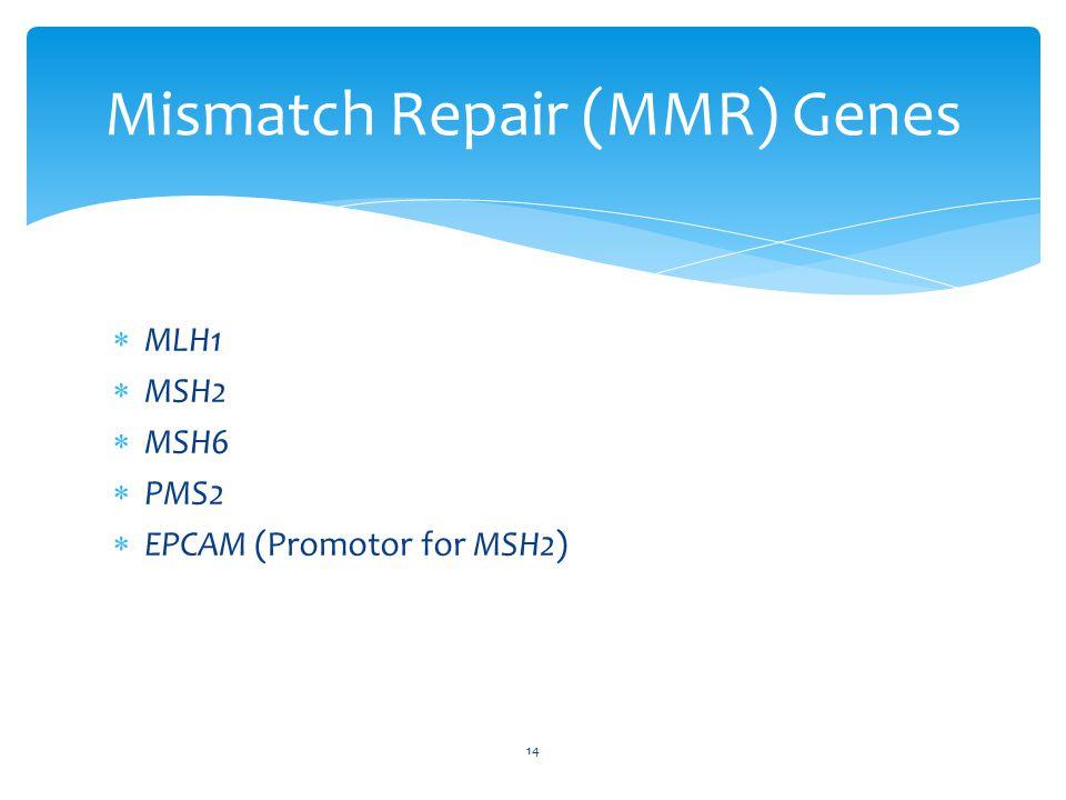  MLH1  MSH2  MSH6  PMS2  EPCAM (Promotor for MSH2) 14 Mismatch Repair (MMR) Genes
