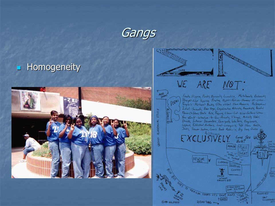 Gangs Homogeneity Homogeneity