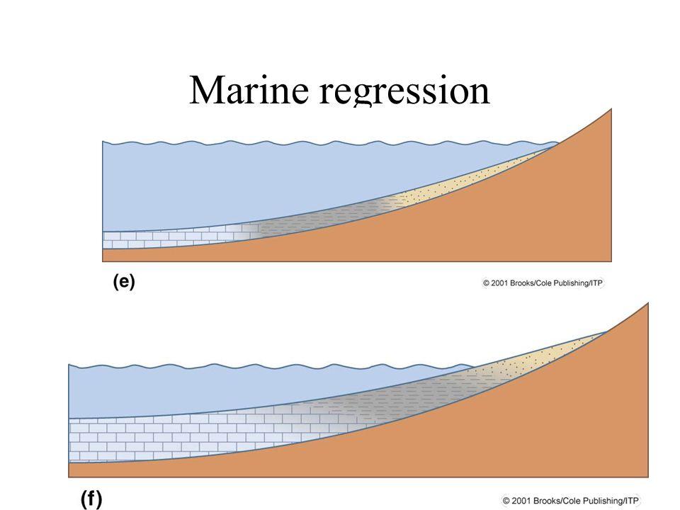 Marine regression