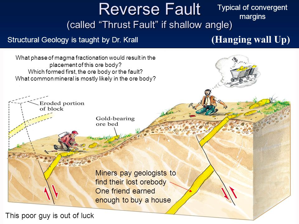 "Reverse Fault (called ""Thrust Fault"" if shallow angle) Younger (Hanging wall Up) Miners pay geologists to find their lost orebody One friend earned en"