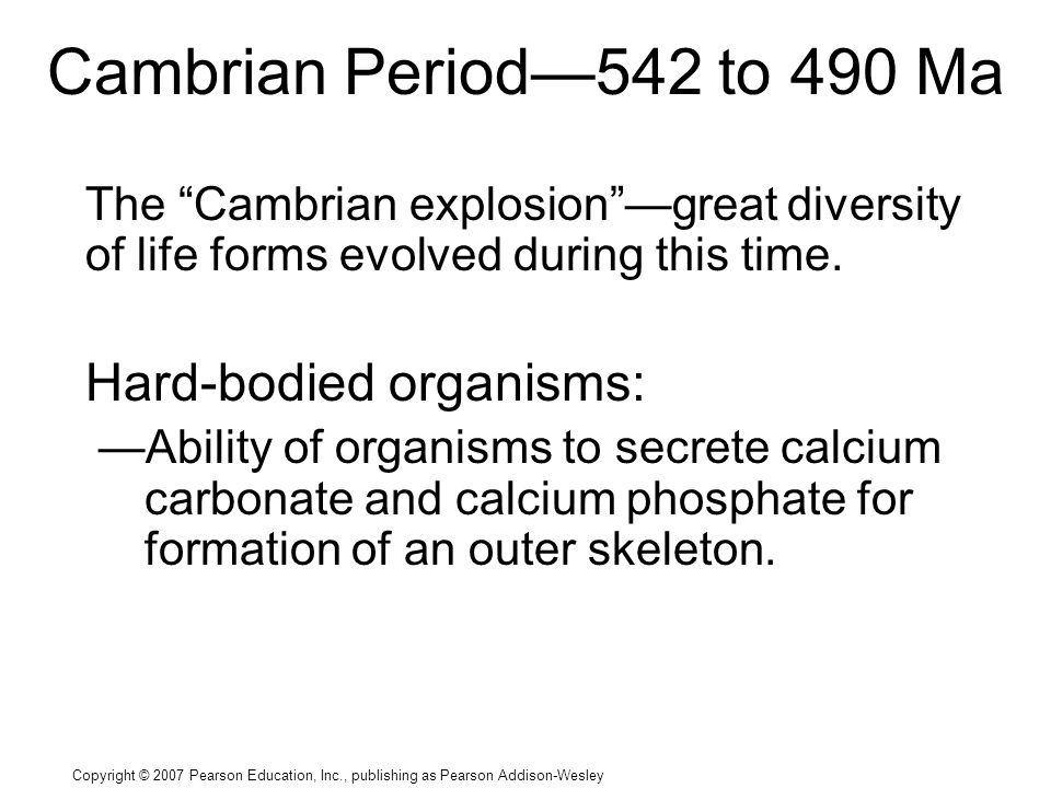 Copyright © 2007 Pearson Education, Inc., publishing as Pearson Addison-Wesley Cambrian Period—542 to 490 Ma The Cambrian explosion —great diversity of life forms evolved during this time.