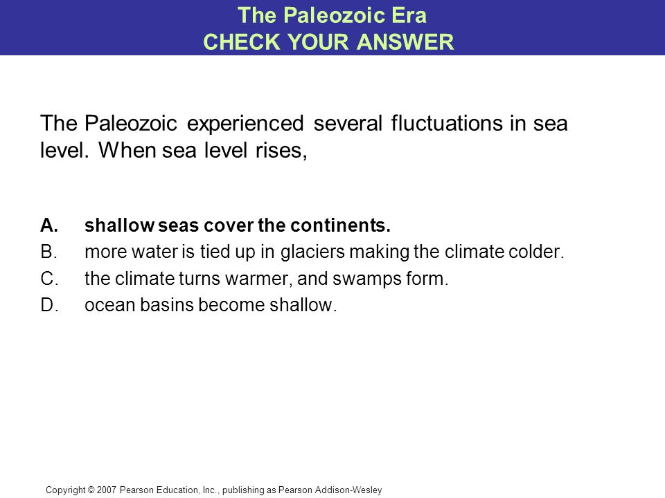 Copyright © 2007 Pearson Education, Inc., publishing as Pearson Addison-Wesley The Paleozoic experienced several fluctuations in sea level.