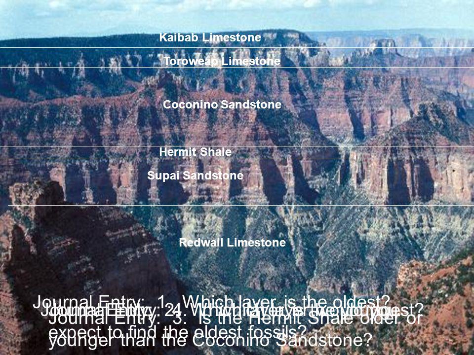 Supai Sandstone Hermit Shale Coconino Sandstone Toroweap Limestone Kaibab Limestone Redwall Limestone Journal Entry: 1. Which layer is the oldest? Jou