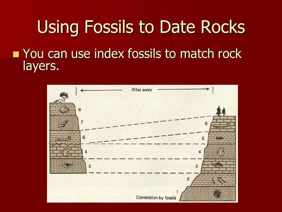 Using Fossils to Date Rocks You can use index fossils to match rock layers. You can use index fossils to match rock layers.
