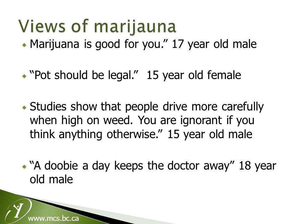  Marijuana is good for you. 17 year old male  Pot should be legal. 15 year old female  Studies show that people drive more carefully when high on weed.