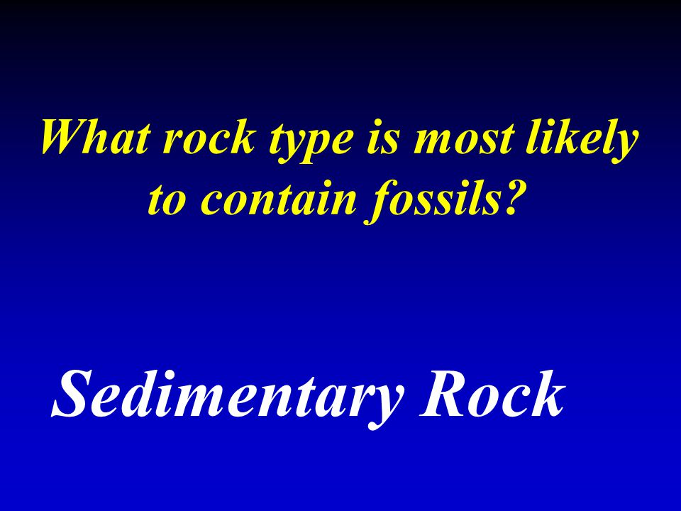 What rock type is most likely to contain fossils? Sedimentary Rock