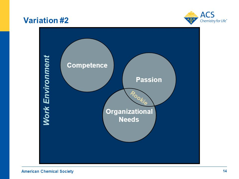 Work Environment Variation #2 American Chemical Society Passion Rookie Competence Organizational Needs 14