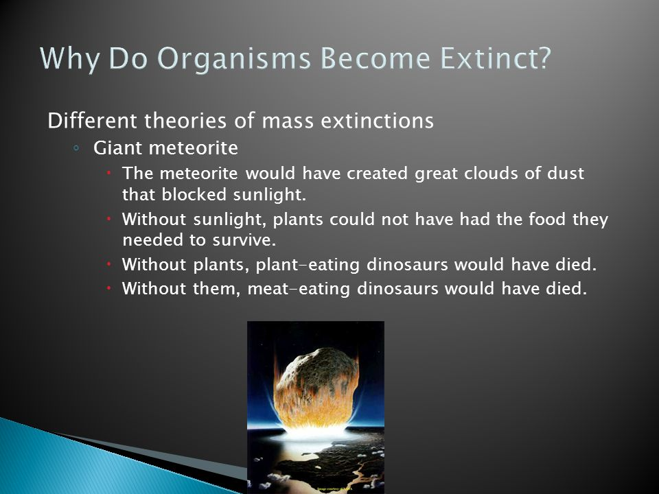 Why Do Organisms Become Extinct? Different theories of mass extinctions ◦ Giant meteorite  The meteorite would have created great clouds of dust that