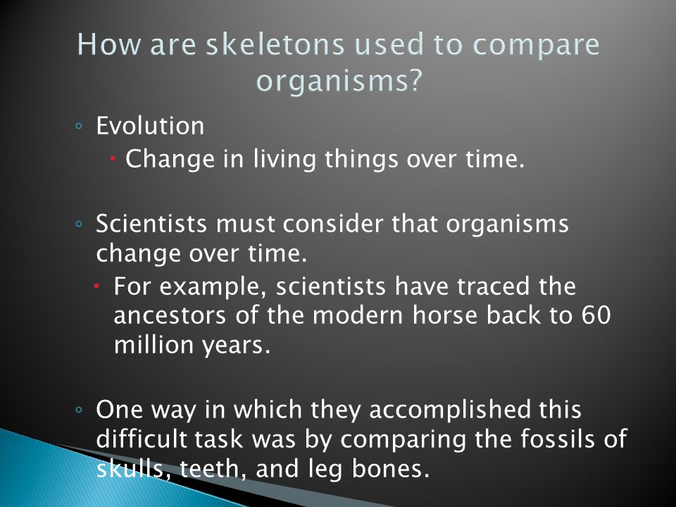 How are skeletons used to compare organisms.◦ Evolution  Change in living things over time.