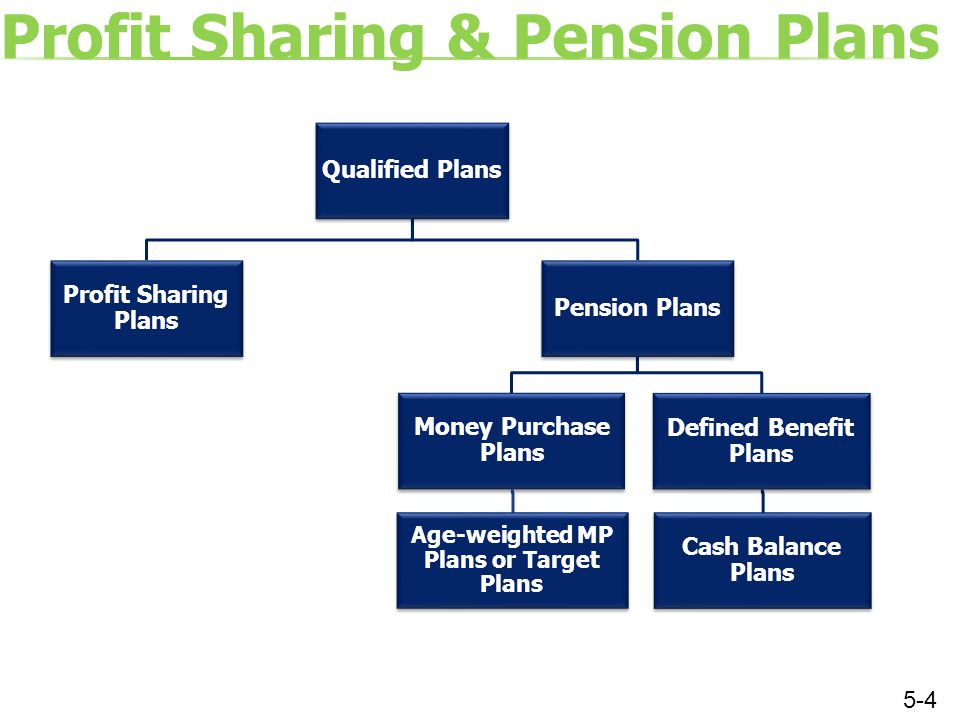 Question 6 Which one of the following objectives for establishing a profit sharing plan would be best met through use of an age-weighted profit sharing plan.
