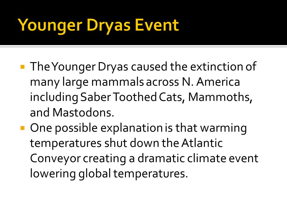  The Younger Dryas caused the extinction of many large mammals across N. America including Saber Toothed Cats, Mammoths, and Mastodons.  One possibl