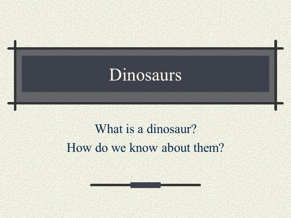 Dinosaurs What is a dinosaur? How do we know about them?