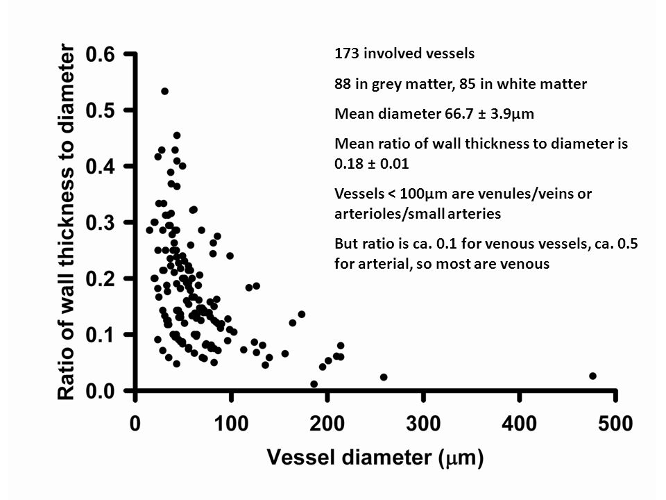 173 involved vessels 88 in grey matter, 85 in white matter Mean diameter 66.7 ± 3.9µm Mean ratio of wall thickness to diameter is 0.18 ± 0.01 Vessels < 100µm are venules/veins or arterioles/small arteries But ratio is ca.