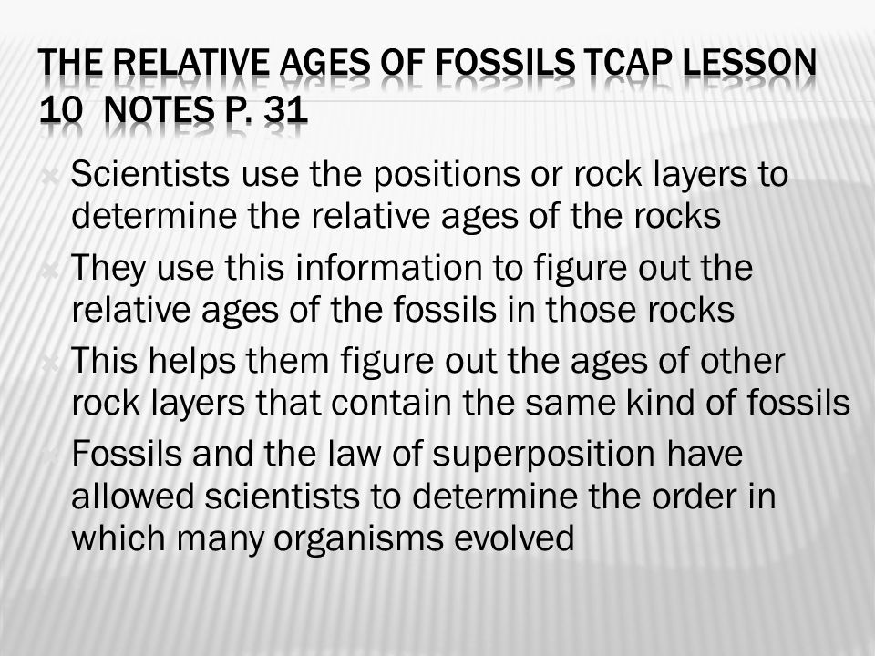  Scientists use the positions or rock layers to determine the relative ages of the rocks  They use this information to figure out the relative ages of the fossils in those rocks  This helps them figure out the ages of other rock layers that contain the same kind of fossils  Fossils and the law of superposition have allowed scientists to determine the order in which many organisms evolved