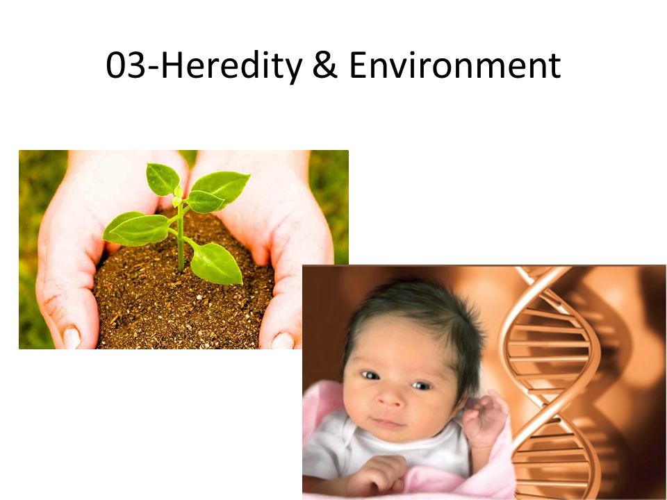 03-Heredity & Environment