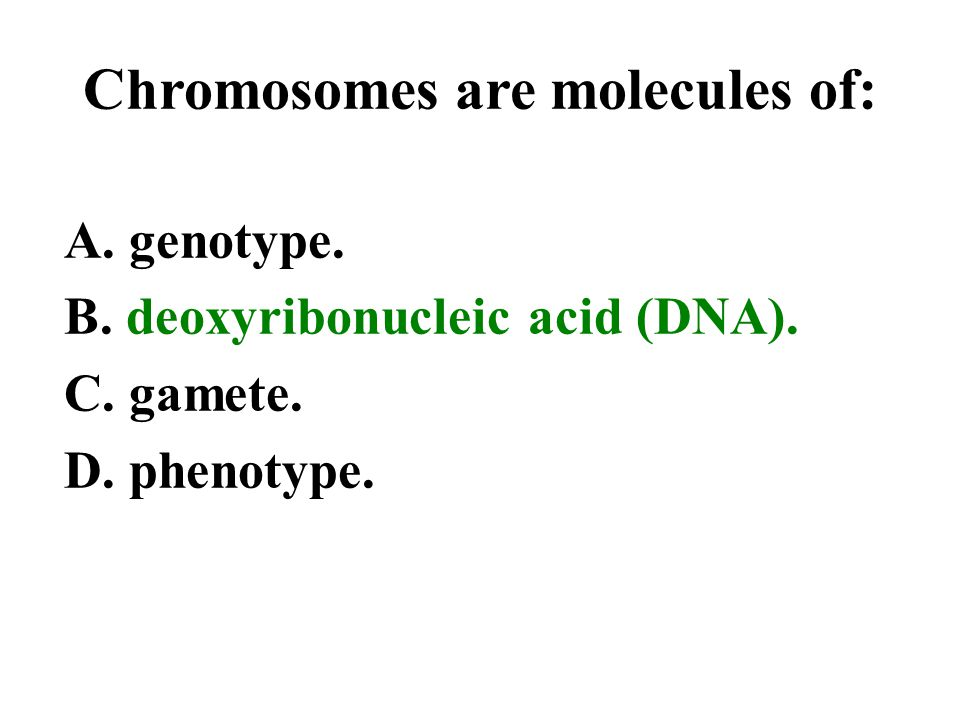 Chromosomes are molecules of: A. genotype. B. deoxyribonucleic acid (DNA). C. gamete. D. phenotype.