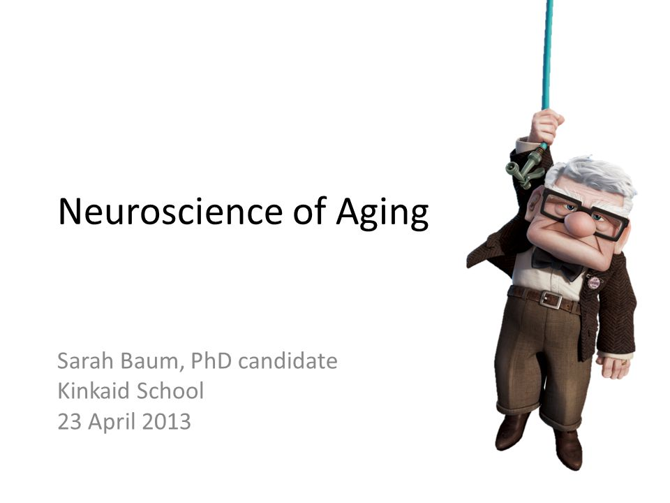 Outline Physical changes in the aging brain – Gray matter changes – White matter changes – Pathological aging Cognitive changes in the aging brain – General slowing – Increased variability – Do brain games really work?