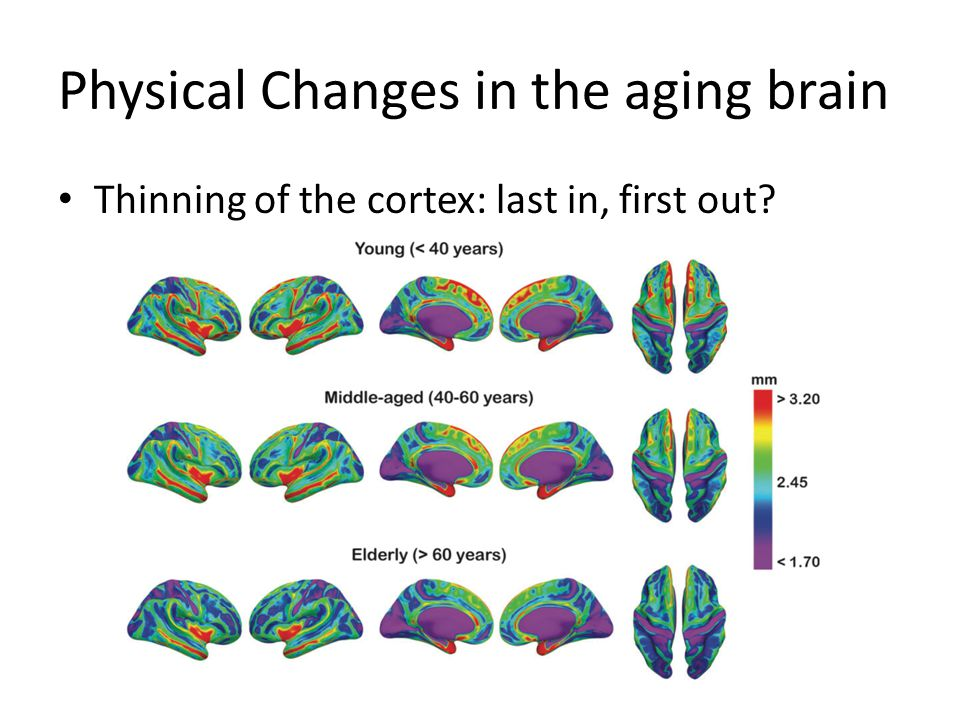 Cognitive changes in the aging brain Increased variability in older adults Hultsch DF, MacDonald SWS, Dixon RA (2002).