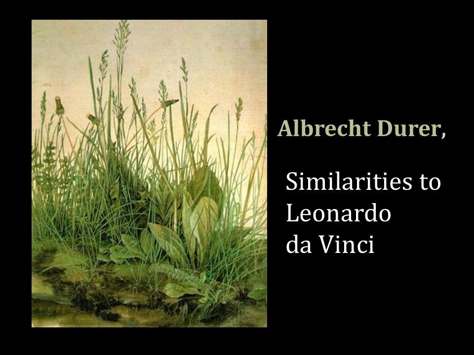Albrecht Durer, Similarities to Leonardo da Vinci