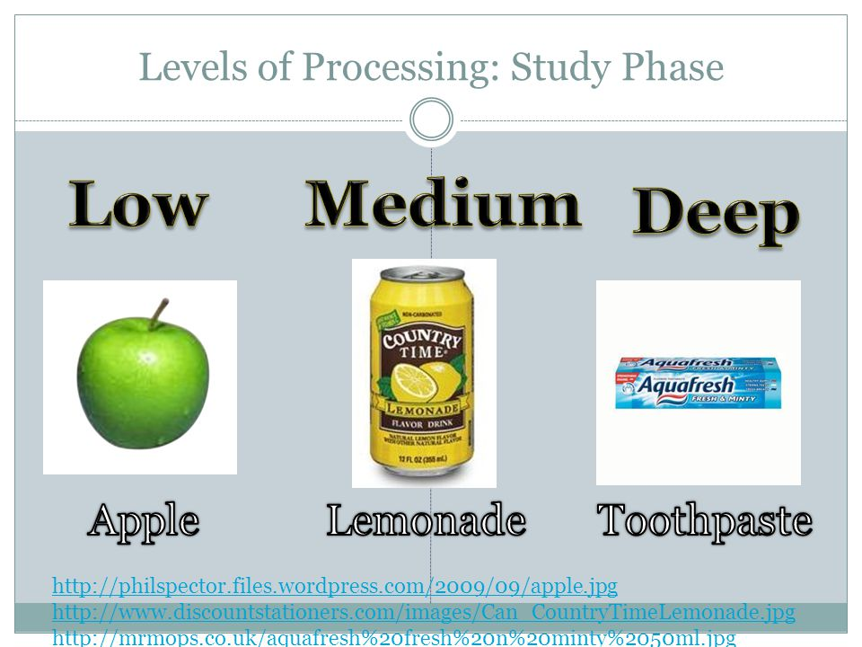 Levels of Processing: Study Phase http://philspector.files.wordpress.com/2009/09/apple.jpg http://www.discountstationers.com/images/Can_CountryTimeLemonade.jpg http://mrmops.co.uk/aquafresh%20fresh%20n%20minty%2050ml.jpg