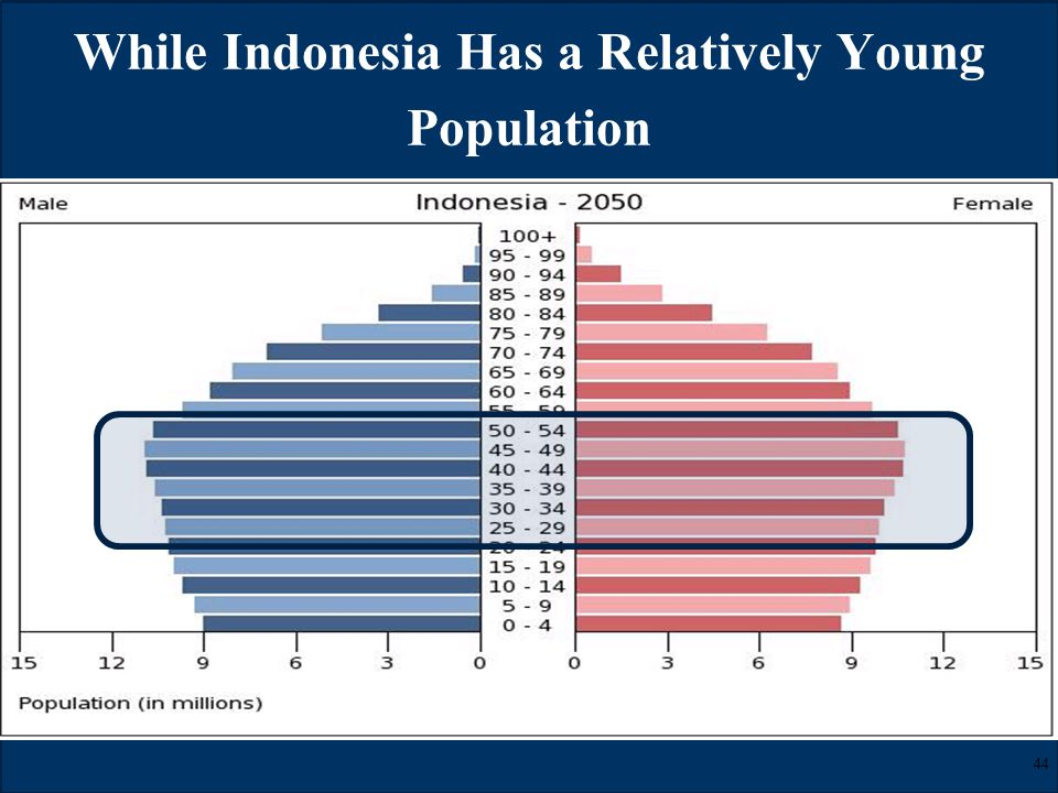 © LL Global, Inc. SM While Indonesia Has a Relatively Young Population 44