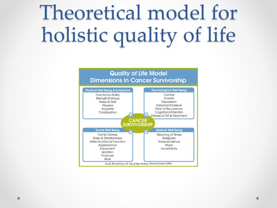 Theoretical model for holistic quality of life
