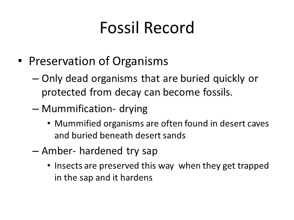 Fossil Record Preservation of Organisms – Only dead organisms that are buried quickly or protected from decay can become fossils. – Mummification- dry