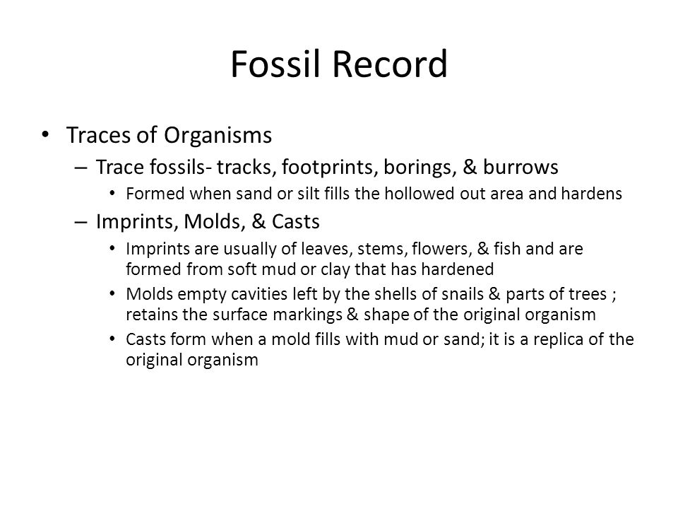Fossil Record Traces of Organisms – Trace fossils- tracks, footprints, borings, & burrows Formed when sand or silt fills the hollowed out area and har