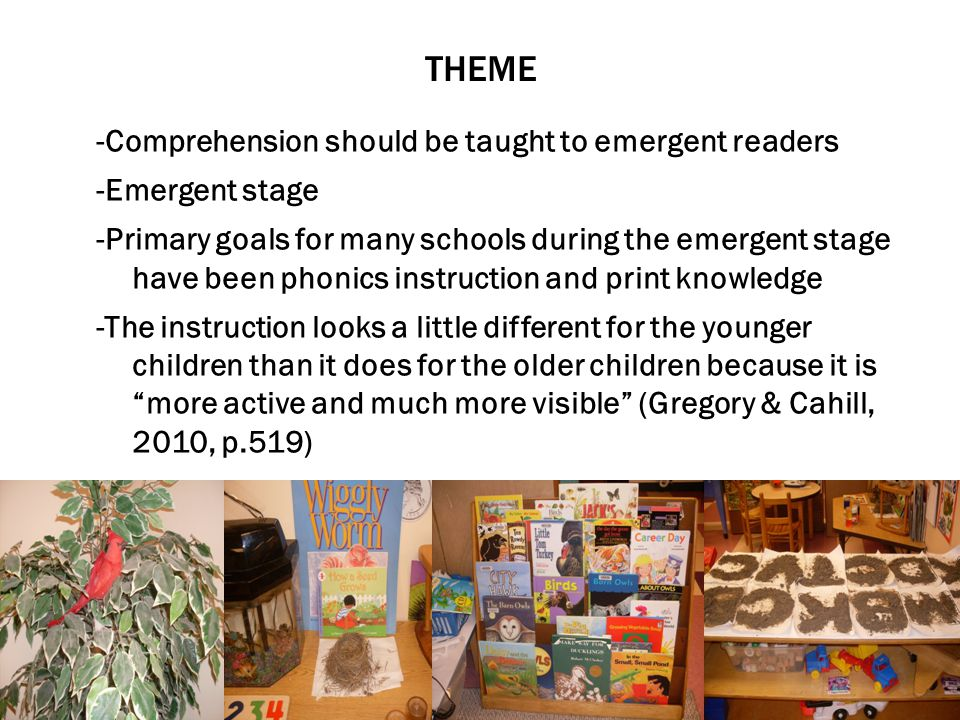 THEME -Comprehension should be taught to emergent readers -Emergent stage -Primary goals for many schools during the emergent stage have been phonics instruction and print knowledge -The instruction looks a little different for the younger children than it does for the older children because it is more active and much more visible (Gregory & Cahill, 2010, p.519)