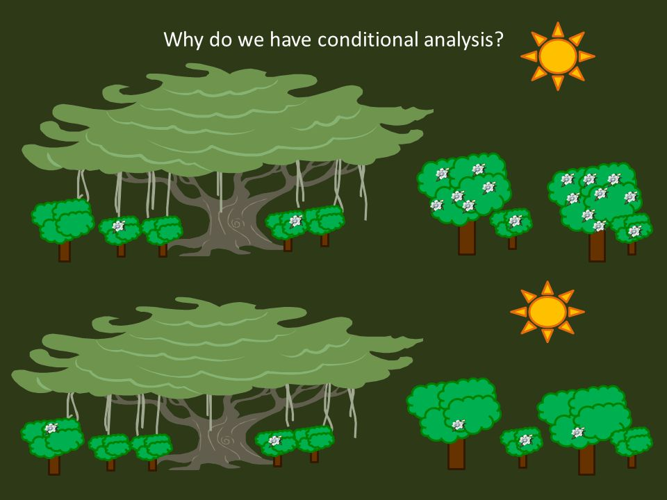 Why do we have conditional analysis?