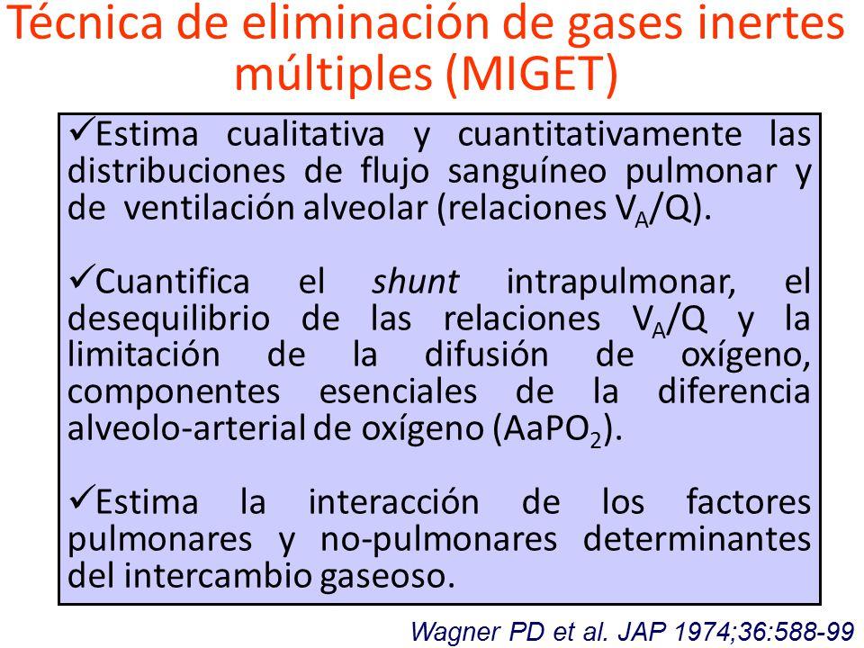 Técnica de eliminación de gases inertes múltiples (MIGET) Wagner PD et al.