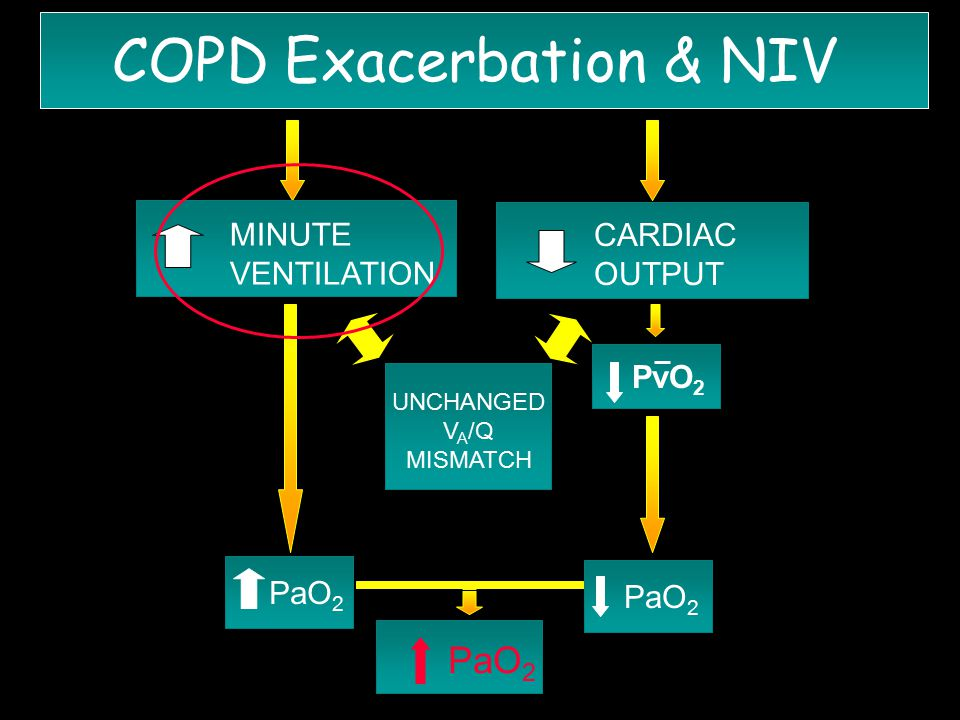 PaO 2 COPD Exacerbation & NIV MINUTE VENTILATION PaO 2 CARDIAC OUTPUT PvO 2 UNCHANGED V A /Q MISMATCH