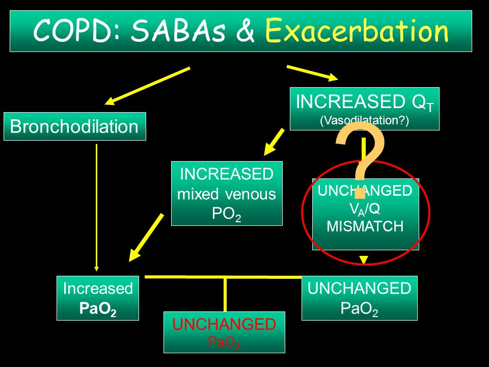 UNCHANGED PaO 2 INCREASED Q T (Vasodilatation?) INCREASED mixed venous PO 2 UNCHANGED V A /Q MISMATCH UNCHANGED PaO 2 Bronchodilation Increased PaO 2