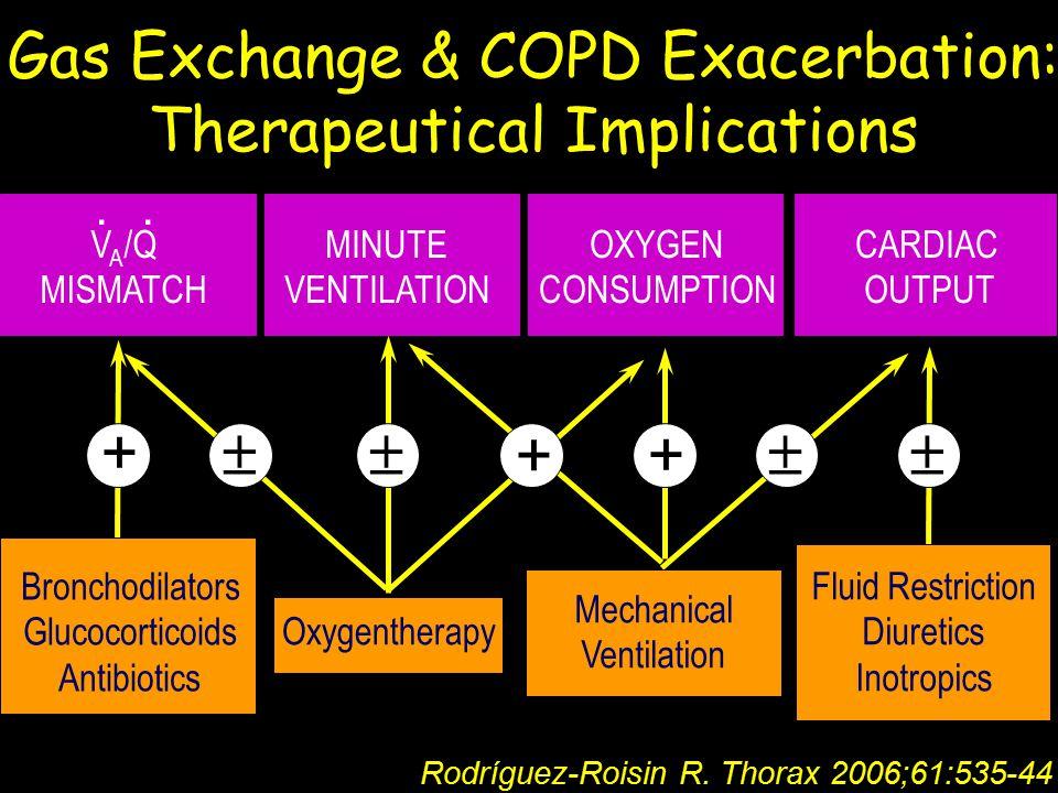 + +   +  Bronchodilators Glucocorticoids Antibiotics Oxygentherapy Mechanical Ventilation Fluid Restriction Diuretics Inotropics Gas Exchange & COPD Exacerbation: Therapeutical Implications V A /Q MISMATCH MINUTE VENTILATION OXYGEN CONSUMPTION CARDIAC OUTPUT..