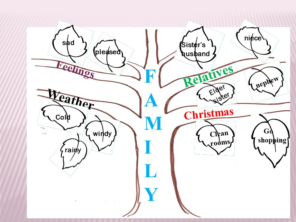 FAMILYFAMILY Christmas Relatives Feelings Weather Clean rooms Cold Go shopping niece nephew Elder sister Sister's husband windy rainy pleased sad