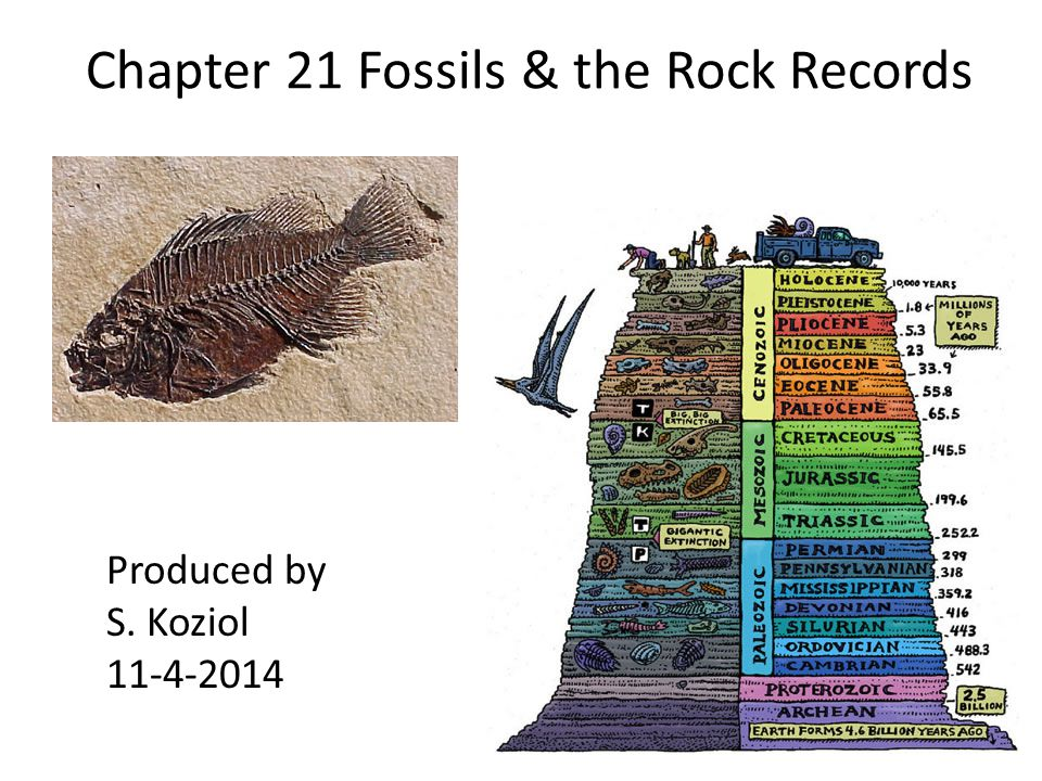 Chapter 21 Fossils & the Rock Records Produced by S. Koziol 11-4-2014