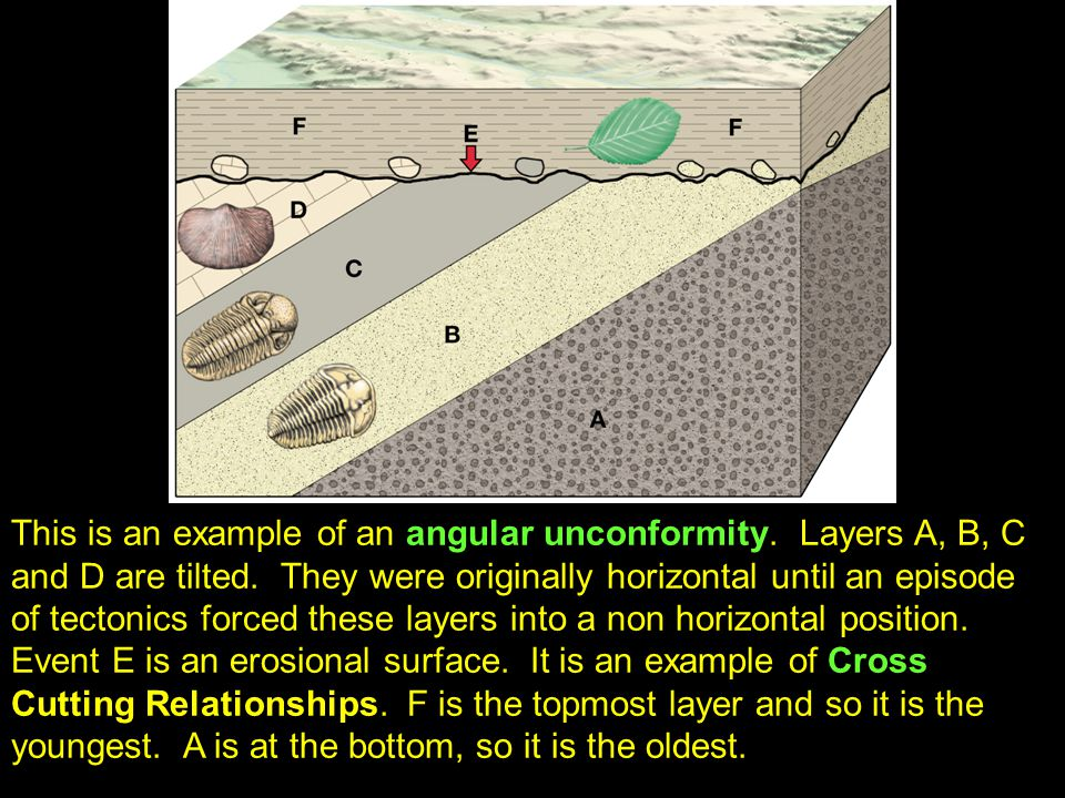 41 This is an example of an angular unconformity. Layers A, B, C and D are tilted.
