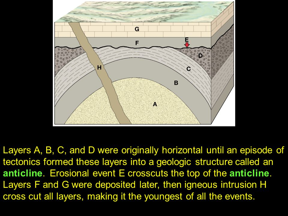 42 Layers A, B, C, and D were originally horizontal until an episode of tectonics formed these layers into a geologic structure called an anticline.