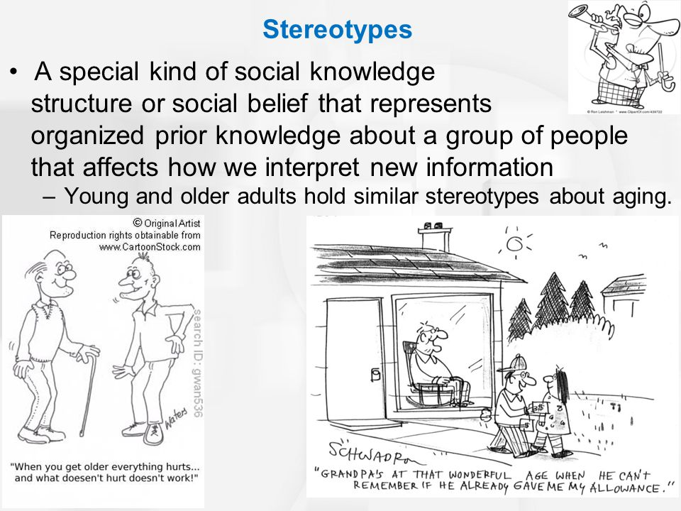 Stereotypes A special kind of social knowledge structure or social belief that represents organized prior knowledge about a group of people that affects how we interpret new information –Young and older adults hold similar stereotypes about aging.