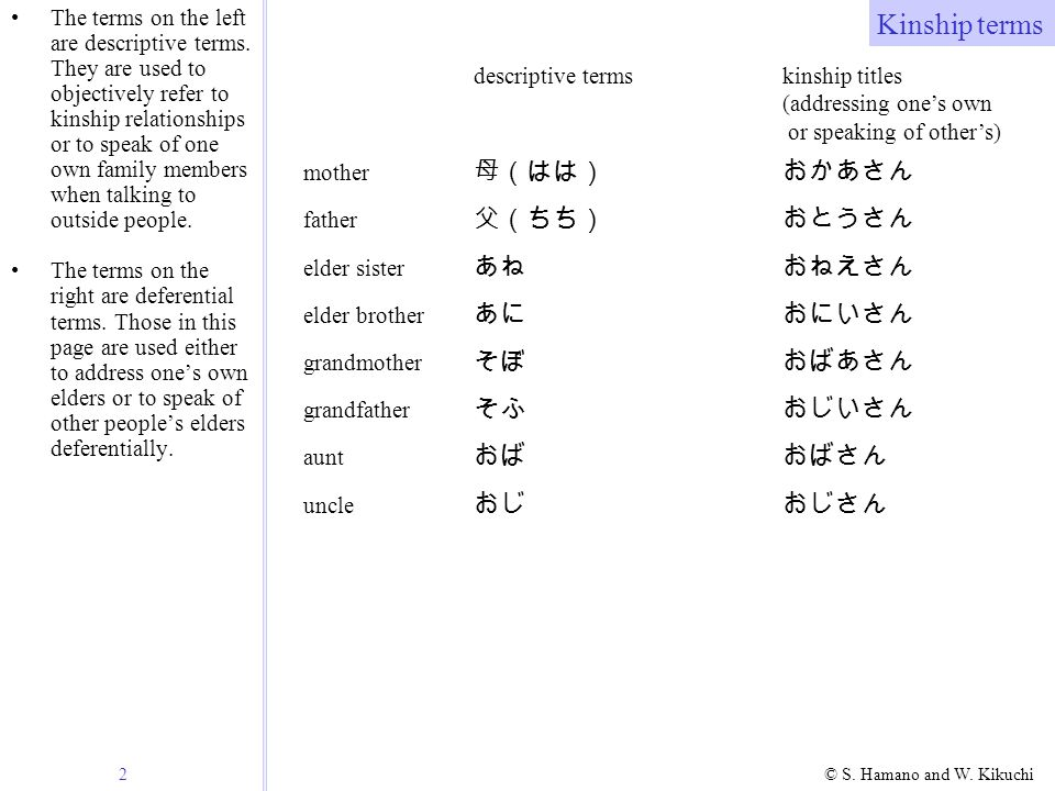 2 © S. Hamano and W. Kikuchi Kinship terms The terms on the left are descriptive terms. They are used to objectively refer to kinship relationships or