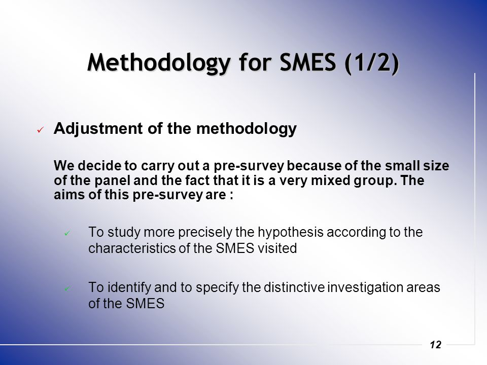 12 Methodology for SMES (1/2) Adjustment of the methodology We decide to carry out a pre-survey because of the small size of the panel and the fact that it is a very mixed group.