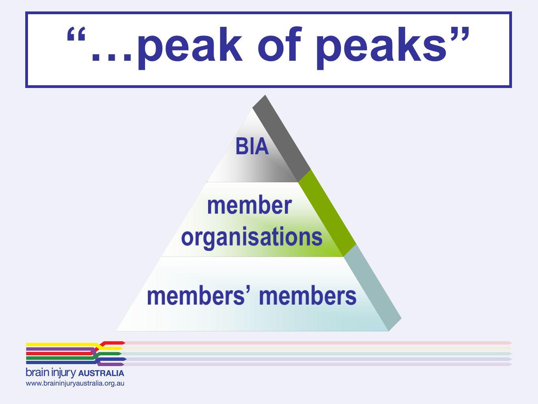 BIA member organisations members' members …peak of peaks