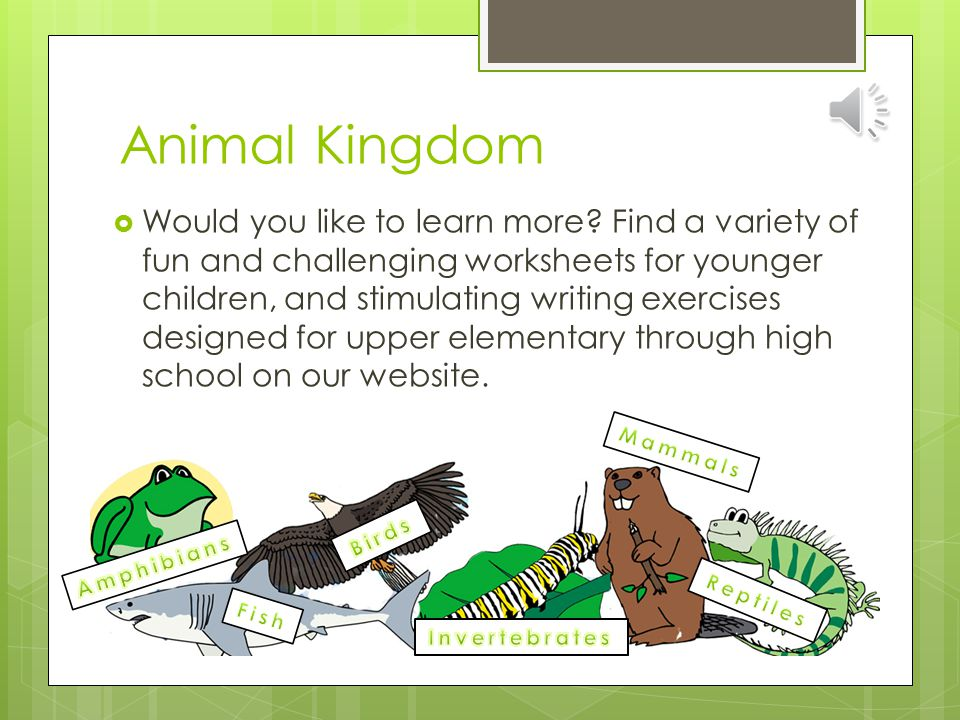Animal Kingdom  Add some life to your classroom with the new Living on Planet Earth series available only on www. abcteach.com