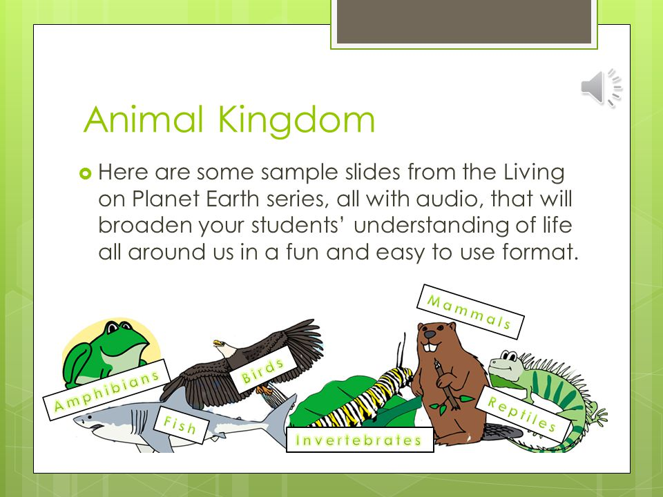 Animal Kingdom  Here are some sample slides from the Living on Planet Earth series, all with audio, that will broaden your students' understanding of life all around us in a fun and easy to use format.